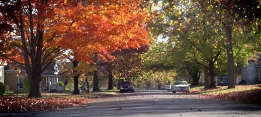 Neodesha City street with fall trees